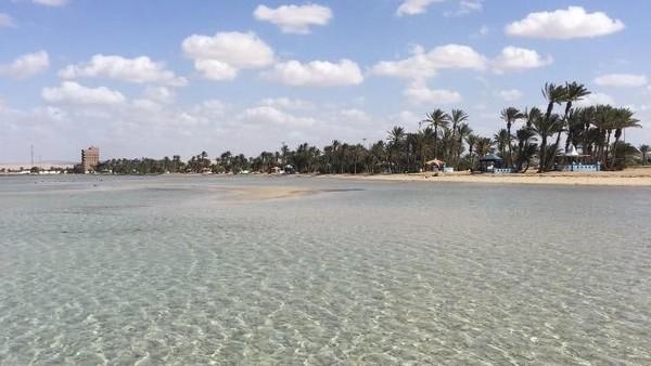 Tentu ada alasan kenapa Umluj dijuluki sebagai Maldivesnya Arab Saudi. Umluj memiliki pantai pasir putih, air jernih dan segala hal yang ada di Maldives (Twitter)