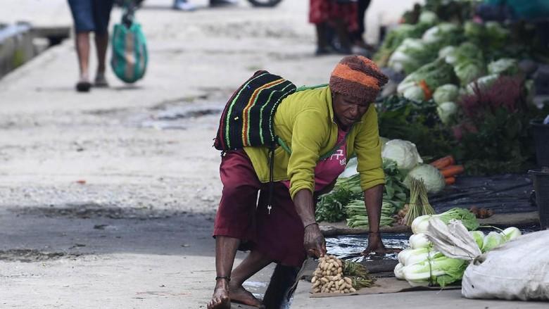 Pasar tradisional di Wamena (Antara Foto/M Risyal Hidayat)