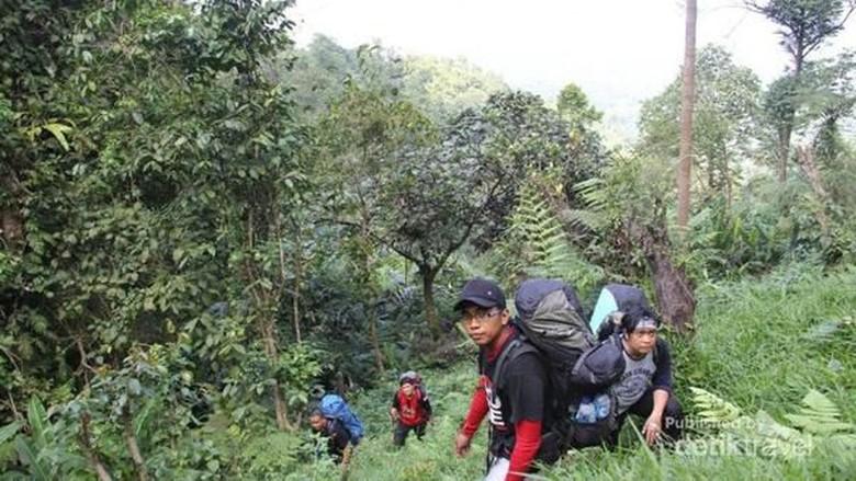 Pendakian di Gunung Aseupan (Stanislaus Riyanta/dTraveler)