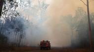 Tragis! Pasangan Kakek-Nenek Tewas Akibat Kebakaran Hutan di Australia