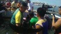 Lumba-lumba Terluka Terdampar di Pantai Cempae Parepare
