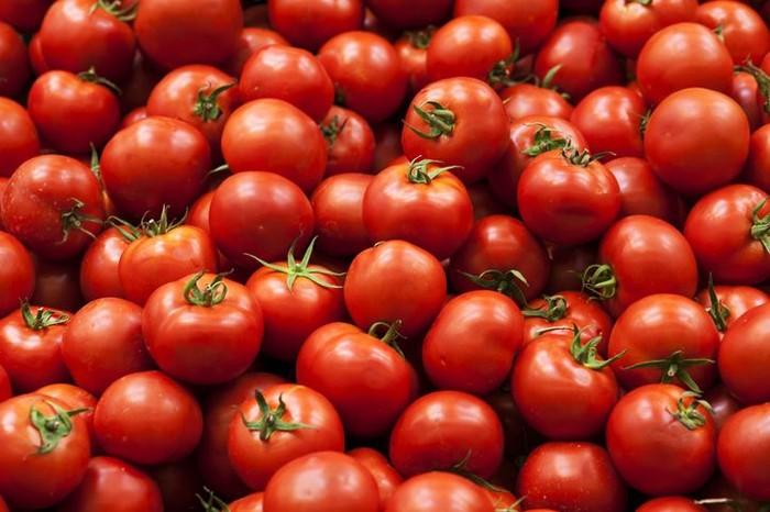 Foto: iStock/Cara Menanam Tomat di Pot, Simpel dan Praktis!