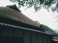 (Ninja Museum)