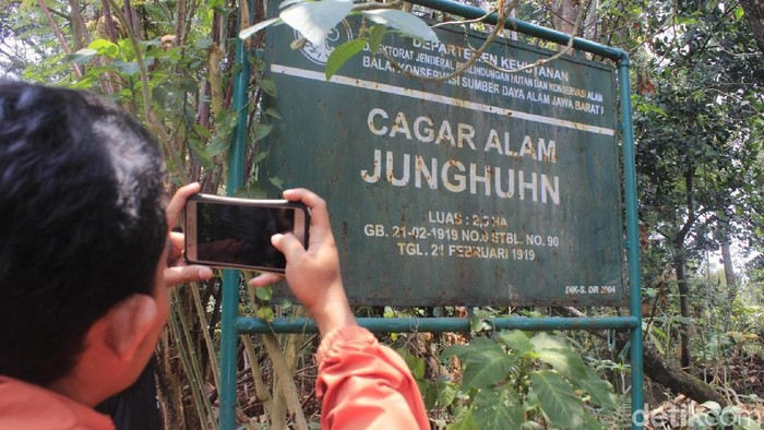 Taman Junghuhn