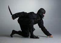 Ilustrasi ninja (Sora News)