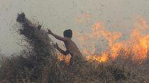 Warga Berjibaku Padamkan Karhutla di Kalimantan Selatan