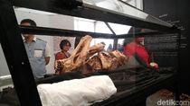 Foto: Mumi & Tradisi Pemakaman Sakral Indonesia