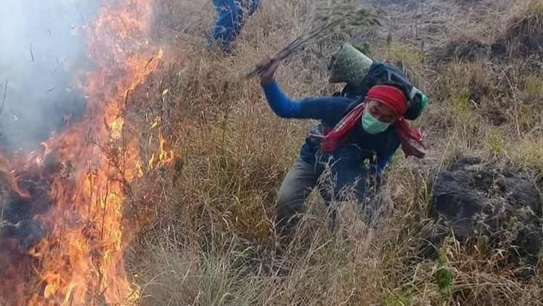 Kebakaran hutan di Gunung Rinjani (Instagram BTNGR)