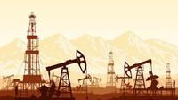 Rencana Jokowi Bebaskan Impor Gas Bisa Suburkan Praktik Mafia