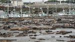 Dahsyatnya Topan Hagibis di Jepang yang Picu Evakuasi 1,6 Juta Orang