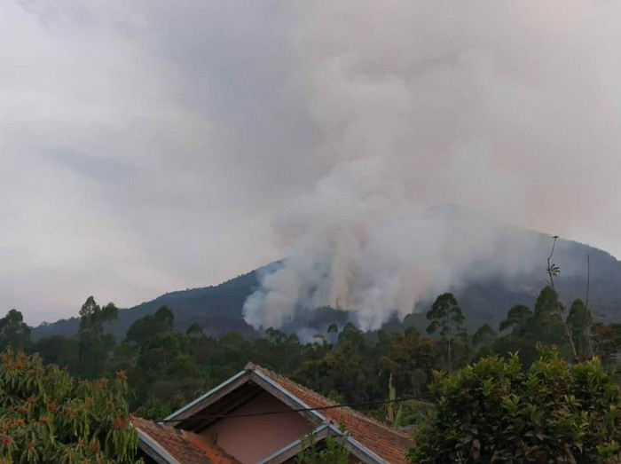 Kebakaran Gunung Cikuray Garut. (Foto: DOK. Agus Muhram)
