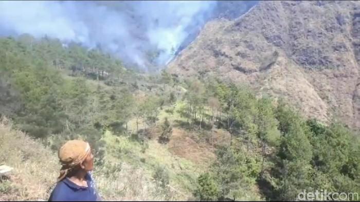 Kebakaran di Gunung Ringgit (Foto: Muhajir Arifin/File)