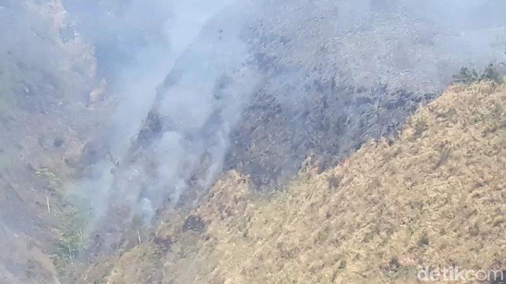 Kobaran Api di Tahura Gunung Ringgit Pasuruan Masih Membara