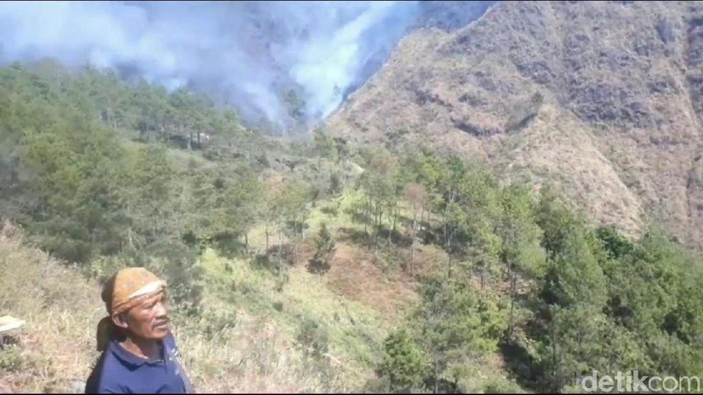 Kebakaran di Gunung Ringgit Terparah Sejak 2009, 90 Persen Lahan Habis