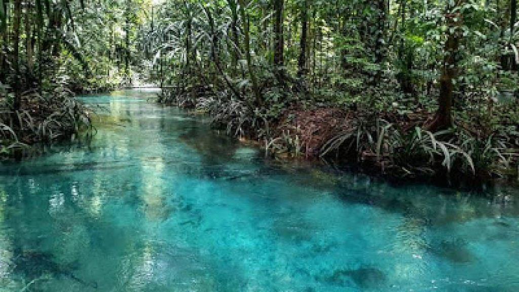 Ini Sungai Berwarna Biru di Raja Ampat