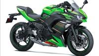 Soal tenaga, dikatakan motor listrik ini akan mampu berlari hingga 27 tenaga kuda. Foto: Kawasaki