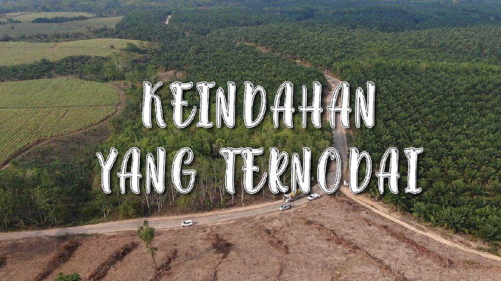 Jalur Asri nan Hijau Kampung Sri Rezeki Ternodai Jalanan Rusak