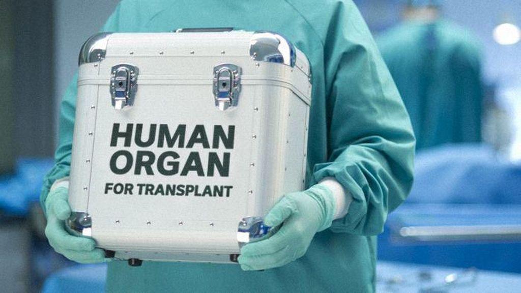Daftar Tunggu Sangat Panjang, Warga Australia Cari Donor Organ ke Luar Negeri