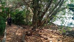 Pulau Bulat Keluarga Cendana, Nasibmu Kini