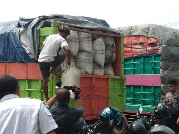 Foto: Polisi sita truk yang bawa 12 ton daun kratom di Palangka Raya (Antara Foto)