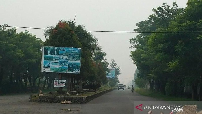 Foto: Kabut asap selimuti Solok Selatan (Antara Foto)