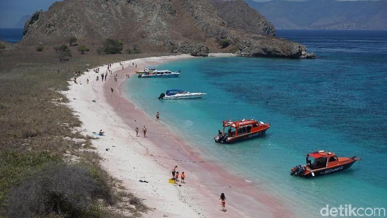 Pantai Pink Pulau Padar di Labuan Bajo. (Foto: Foto: Ahmad Masaul Khoiri/detikcom)