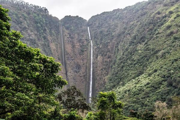 Paiea disembunyikan di Lembah Waipio untuk menghindari peperangan dan ditempa fisik, mental, dan keahlian lainnya. Setelah remaja, dia keluar dari sana dan menaklukan kerajaan-kerajaan di Hawaii (iStock)