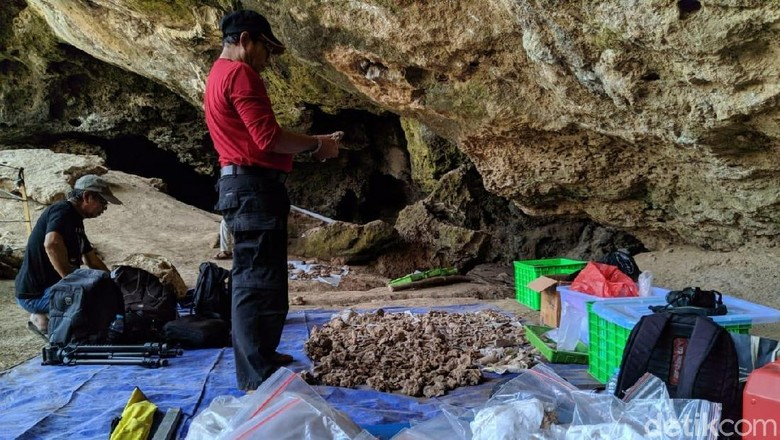 Hasil penelitian manusia purba di Gua Lawa, Sampung, Ponorogo. (Foto: Charolin Pebrianti/detikcom)