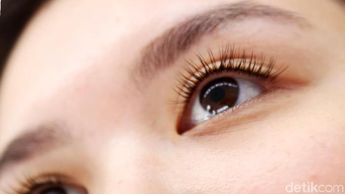 bulu mata palsu magnet jadi viral