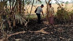 Berniat Padamkan Kebakaran, Nenek di Mojokerto Justru Tewas Terbakar