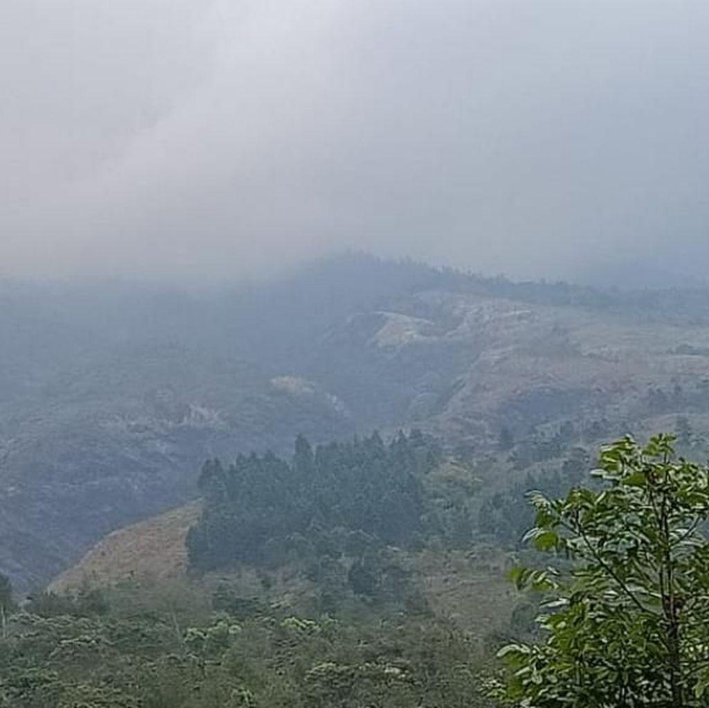 Hutan Gunung Ringgit Habis Terbakar, Warga Sesalkan Telatnya Water Bombing