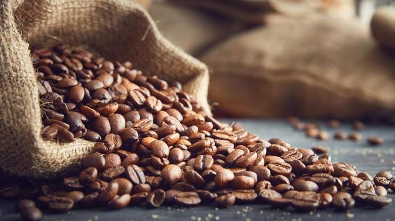 kulit biji kopi