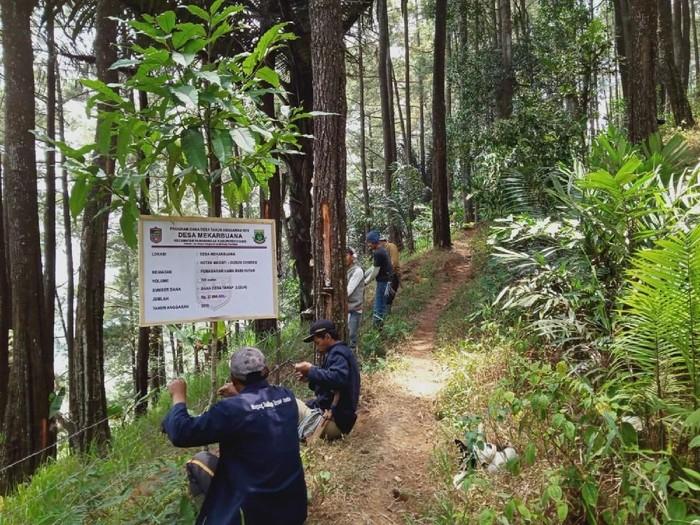 Warga Desa Mekarbuana, Kabupaten Ciamis, memasang pagar untuk antisipasi babi hutan. (Foto: Dok. Desa Mekarbuana)