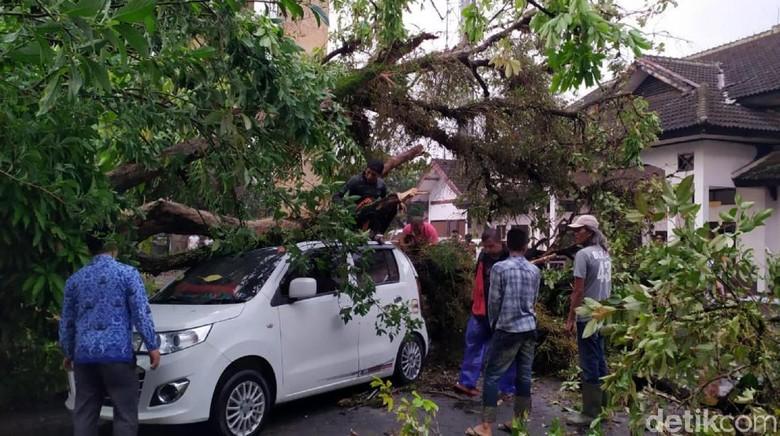 Cerita Pria Cianjur Tolong Istri Terjebak di Mobil Tertimpa Pohon