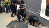 Gegana Akan Disposal 119 Butir Peluru yang Ditemukan di Selokan Yogya