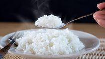Berhenti Memusuhi Nasi! Salahkan Porsi Jika Gemuk atau Kena Diabetes