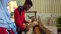 Pameran Museum Se-Pantura Tampilkan Fosil Jutaan Tahun