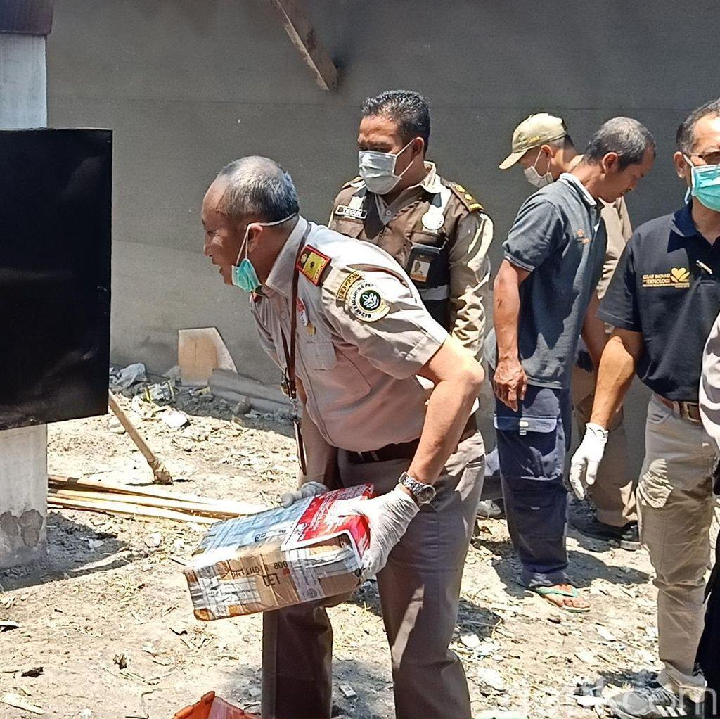 59 Paket Benih dan Tanaman Ilegal Asal 16 Negara Dimusnahkan