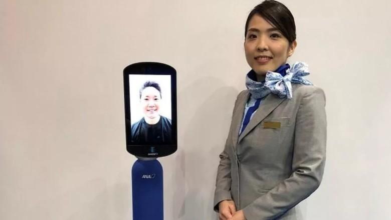 Robot buat traveler mager. (Foto: dok: All Nippon Airways)