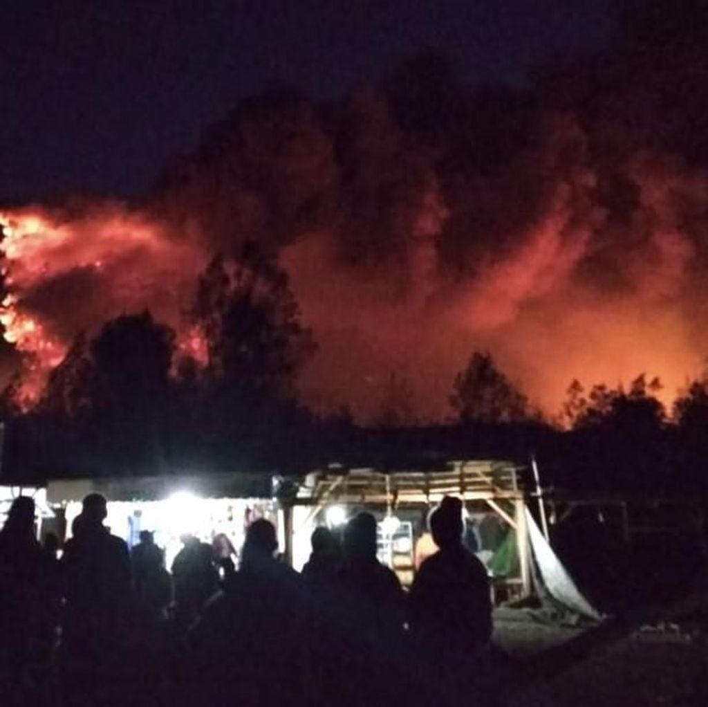 Gunung Ranti di Banyuwangi Terbakar Hebat