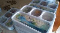 Lunch box serta tumbler untuk para peserta tour (Randy/detikcom)
