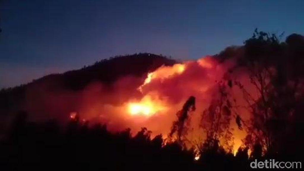 Api Masih Menyala, Akibatkan Separuh Gunung Ranti Terbakar