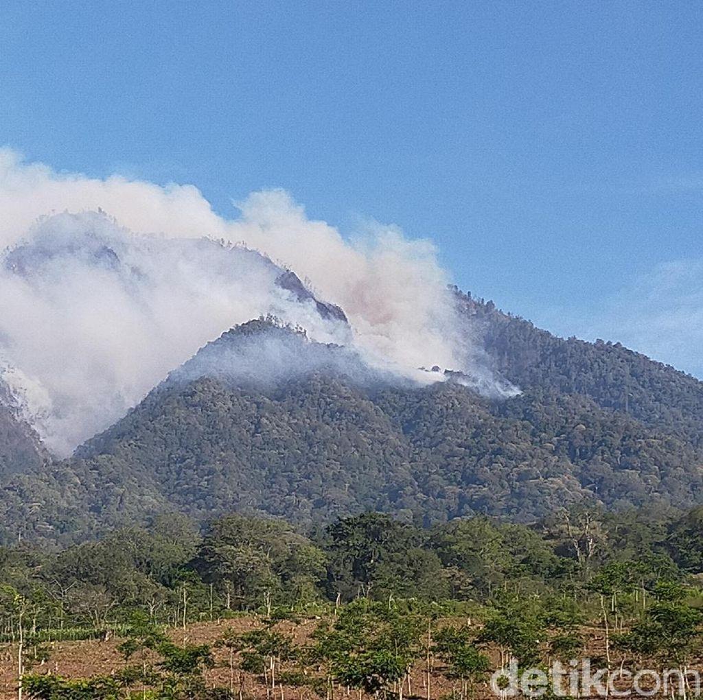 Angin Kencang Jadi Kendala Sulitnya Padamkan Kebakaran Gunung Ranti