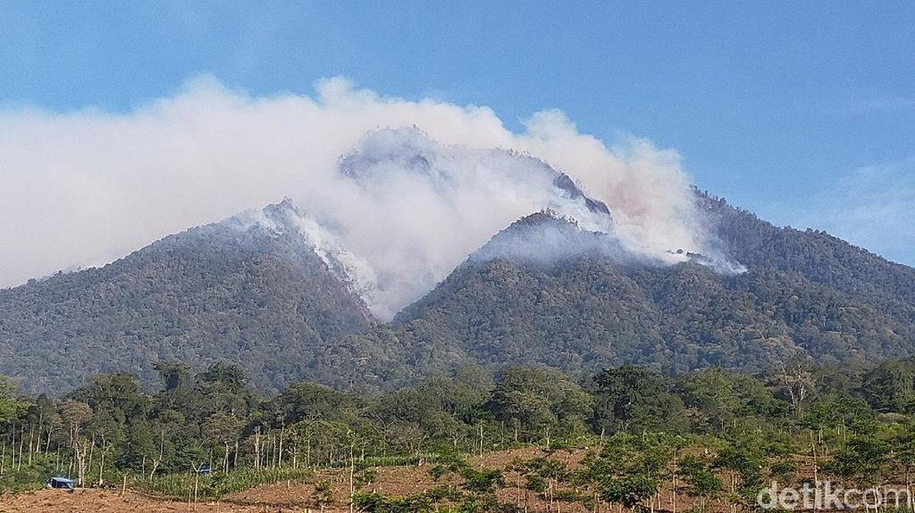 Begini Kondisi Gunung Ranti Usai Terbakar Hebat