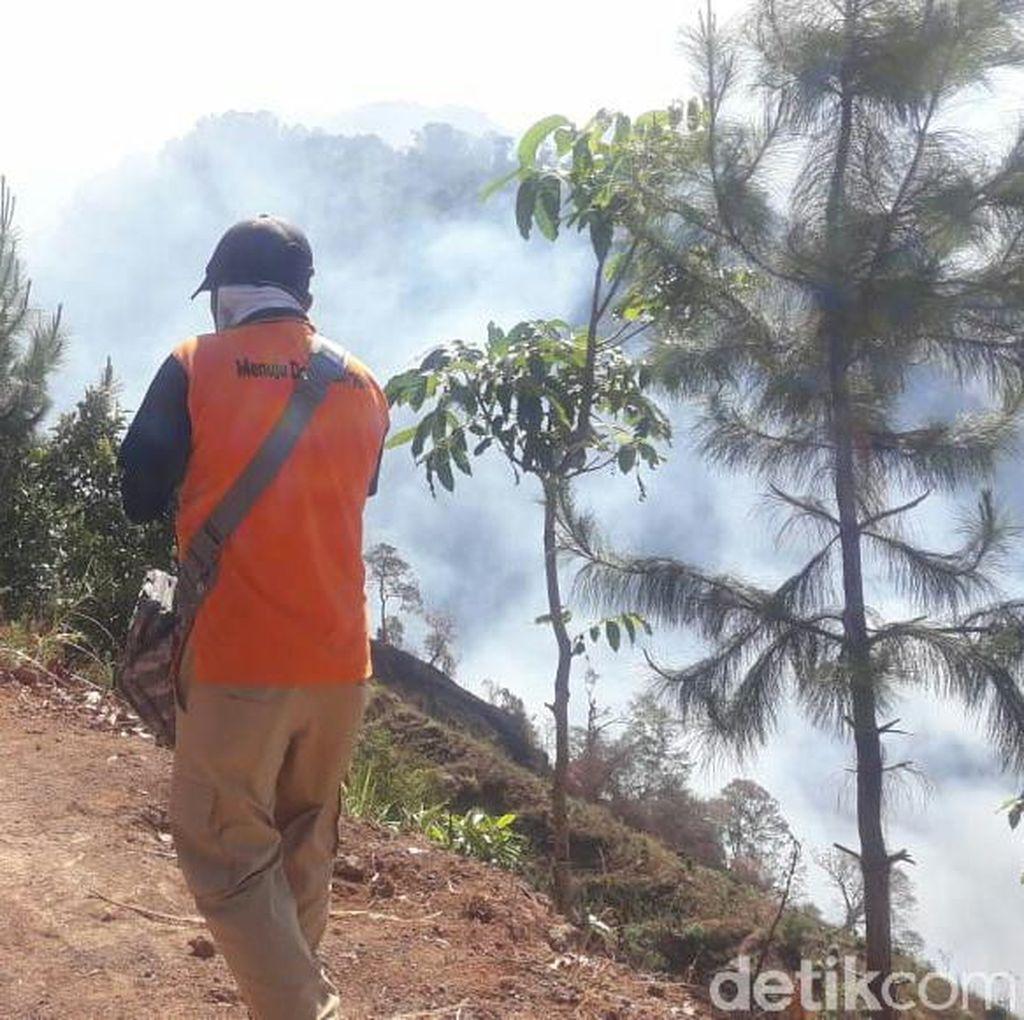 Ada Dugaan Faktor Kesengajaan dalam Kebakaran Gunung Argopuro
