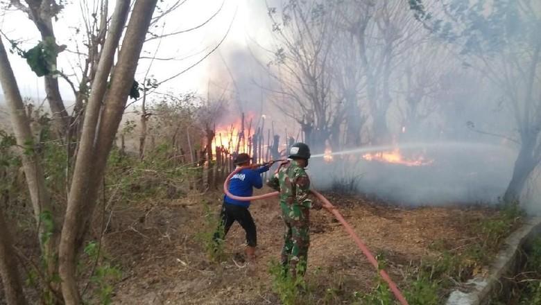 Kebakaran lahan HGU di Gunung Tambora berhasil dipadamkan (dok Korem 162/WB)