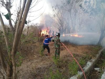 300 Hektar Lahan Terbakar di Gunung Tambora Berhasil Dipadamkan