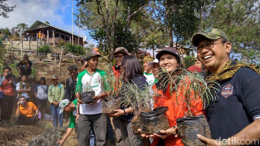Cara TN Gunung Ciremai Lestarikan Edelwiss sang Bunga Abadi