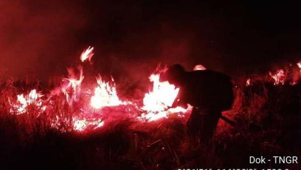 Kecepatan angin yang relatif kencang dan kondisi vegetasi yang mudah terbakar mengakibatkan api dengan cepat meluas dan menyulitkan proses pemadaman.