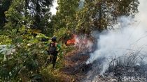 Pemadaman Kebakaran Hutan di Dieng Terkendala Medan Terjal